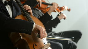 Classical Music Concert. Cellist and violinist playing at the concert stock footage