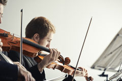 Classical music: concert. Violinists playing at the concert Stock Images