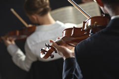 Classical music: concert. Violinists playing at the concert, rear view Royalty Free Stock Photo