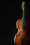Classical music instruments violin Stock Image