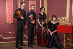 Classical music quartet posing after the concert. Stock Photography