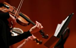 Classical music. Violinists in concert. Stringed, violinist. Closeup of musician playing the violin during a symphony. Classical music. Violinists in concert stock images