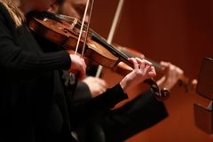 Classical music. Violinists in concert. Stringed, violinist.Closeup of musician playing the violin during a symphony. Classical music. Violinists in concert Stock Photo