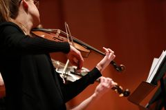 Classical music. Violinists in concert. Stringed, violinist.Closeup of musician playing the violin during a symphony. Classical music. Violinists in concert Royalty Free Stock Photo