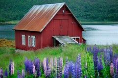 Norway scenery Royalty Free Stock Photo