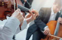 Classical orchestra string section performing Stock Photo