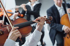 Classical orchestra string section performing Stock Images