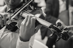 Classical orchestra string section performing Royalty Free Stock Photos