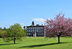 Palace Demesne. Classical Palace Demence in Armagh city and blossoming spring. Beautiful spring colours and old Palace give you interestig composition Royalty Free Stock Photo