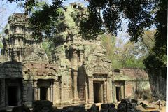 Cambodia Angkor Wat Ta Prohm Temple Classical picture royalty free stock image