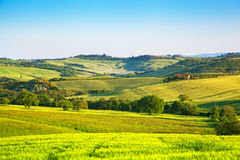 Classical rural landscape in Tuscany Stock Image