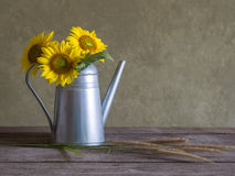 Classical still life with beautiful sunflowers bouquet Stock Photos