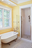 Classical style bathroom Stock Photos