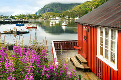 Norway scenery Royalty Free Stock Photo