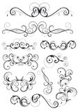 Classical swirly floral decoration Royalty Free Stock Photo