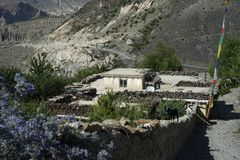 The classical village house in Annapurna Circuit Stock Photo