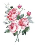 Classical vintage floral greeting card, watercolor vector illustration
