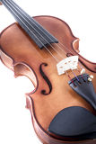 Classical, Violin front view isolated on white, vintage Stock Photos