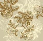 Classical wall-paper with a flower pattern. Fragment Stock Photo