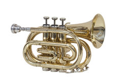 Classical wind musical instrument cornet isolated on white background Stock Photo