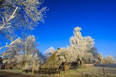 A classical winter landscape on a beautifull day Stock Photo