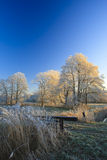 A classical winter landscape on a beautifull day Royalty Free Stock Images