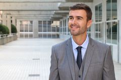 Classically good looking male isolated in office space.  Royalty Free Stock Photos
