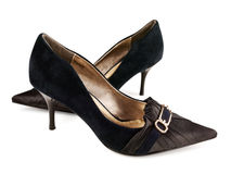 classicen shoes kvinnan Royaltyfria Foton