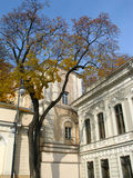 Classicism and autumn. Classicism style palace and autumn tree in Vilnius,  Lithuania Stock Photos