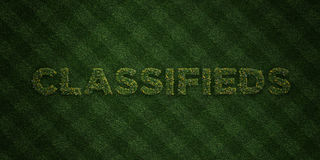 CLASSIFIEDS - fresh Grass letters with flowers and dandelions - 3D rendered royalty free stock image. Can be used for online banner ads and direct mailers Royalty Free Stock Photos