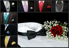 Classy Collection Royalty Free Stock Image