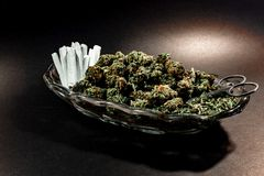 Classy glass dish with marijuana bud, scissors and a dozen joint stock photo