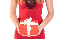 Classy woman holding a gift. On white background Royalty Free Stock Image