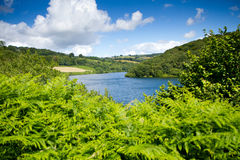 Clatworthy Reservoir in Somerset. Clatworthy Reservoir in the Brendon Hills in Somerset.  Located on the edge of the Exmoor National park Royalty Free Stock Images