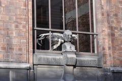 Claude Bernard slår sönder - naturhistoriamuseet - Paris - Frankrike Royaltyfri Fotografi