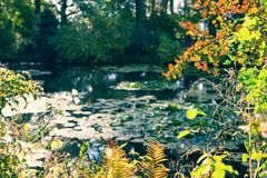 Claude Monet the garden in autumn, water lilies in the lake on a Sunny day. Giverny, France Stock Images