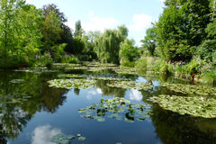 Claude Monet garden. Scenic view of Claude Monet's garden with water lilies and leafy green trees, Giverny, France Royalty Free Stock Photos