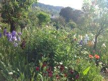 Claude Monets trädgård Arkivfoto