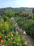 Claude Monets trädgård Royaltyfria Foton
