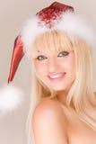claus mrs skämtsamma santa Royaltyfri Foto