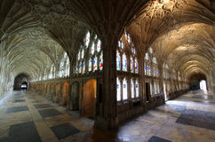 Claustro de la catedral Inglaterra de Gloucester Fotografía de archivo