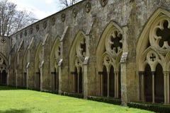 Claustros, catedral de Salisbury, Salisbury, Wiltshire, Inglaterra Foto de archivo libre de regalías