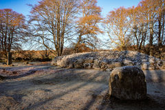 Clava石标苏格兰特写镜头视图  库存图片