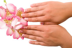 Clave el cuidado para las manos de las mujeres Fotos de archivo libres de regalías