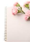 Clavel rosado con el papel Fotografía de archivo libre de regalías
