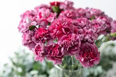 Clavel violeta de la lila inusual del manojo en el florero de cristal Flores del ramo en fondo ligero wallpaper fotografía de archivo