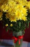 Claveles amarillos Fotografía de archivo libre de regalías