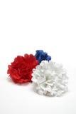 Claveles rojos, blancos y azules Imágenes de archivo libres de regalías