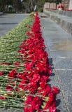 Claveles rojos por la llama eterna Obelisco de la gloria, Sevastopol Soporte de Sapun, Crimea imagen de archivo