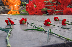 Claveles rojos y llama eterna Foto de archivo libre de regalías